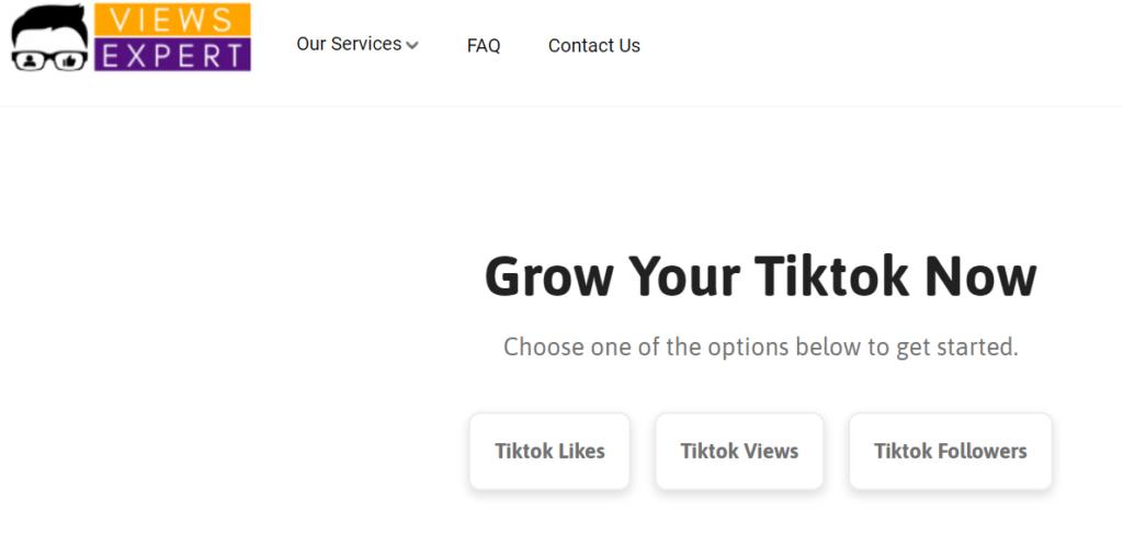 ViewsExpert - Buy TikTok followers